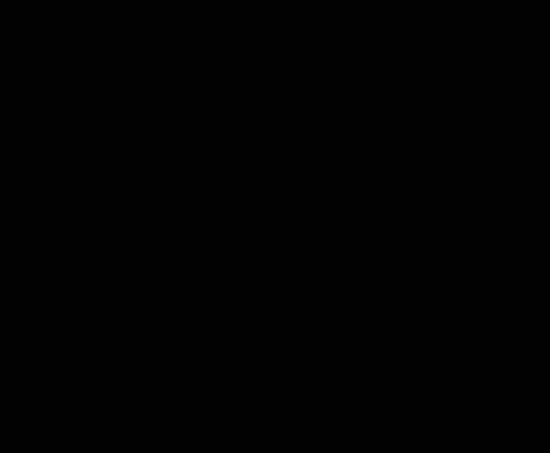 Blaq Projects